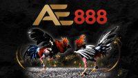 AE888 | Link VIP vào Casino Venus AE888 không bị chặn